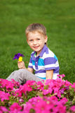 Little boy smelling flower close up. Stock Image