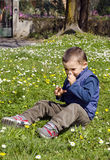 Little boy smelling a flower Royalty Free Stock Photo