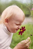 Little Boy Smelling Flower Royalty Free Stock Photo