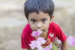 Little boy smelling flowers Stock Images