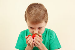 Little boy smelling handful of fresh strawberries. Little boy smelling a handful of fresh strawberries Royalty Free Stock Photos