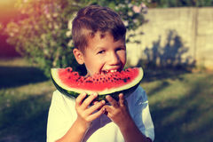Little boy with smile bite into slice of watermelon Royalty Free Stock Photo