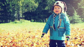 Little Boy Smiling in Autumn Park at Sunny Day. Happy Little Boy Smiling in Autumn Park at Sunny Day. Kid Outdoors in Fall. Warm Colors Toned Video stock footage