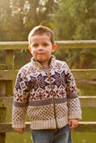 Little boy smiling in the evening Autumn sun Royalty Free Stock Images