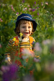 Little boy smiling in a flowers field Royalty Free Stock Photos