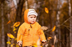 Little boy smiling with leaves Royalty Free Stock Photography