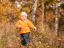 Little boy smiling with leaves Stock Photos