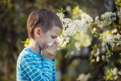 Little boy sneezes because of an allergy to pollen. Little boy sneezes because of an allergy to pollen Royalty Free Stock Photos