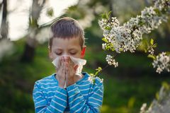 Little boy sneezes because of an allergy to pollen. Little boy sneezes because of an allergy to pollen Stock Photography