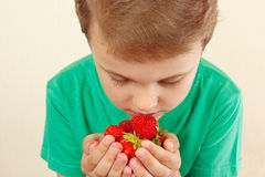 Little boy sniffing aroma of sweet red strawberries Stock Photography