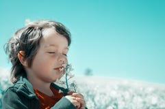 Little boy sniffs a flower stock photos