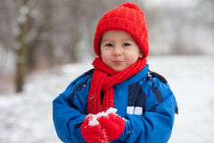 Little boy in the snow Royalty Free Stock Photography