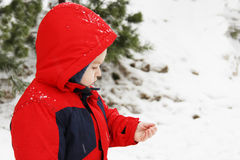 Little boy and snowflakes. Cute toddler boy catching snowflakes Royalty Free Stock Images