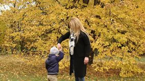 Mother and son walking in autumn Park. stock video
