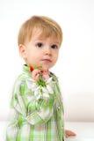 Little boy spring arrangement Royalty Free Stock Images