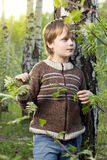 Little boy in spring birch forest Royalty Free Stock Photos