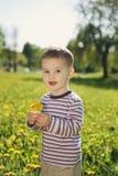 Little boy in spring dandelion meadow Stock Photo