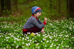 Little boy in spring forest with many flowers Royalty Free Stock Photography