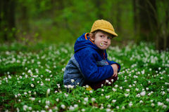 Little boy in spring forest with many flowers Stock Photography