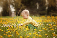 Little boy on the spring meadow. Crouching little boy on the spring meadow, pointing on flower of dandelion royalty free stock photography