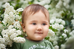 A little boy in the spring time Royalty Free Stock Photo