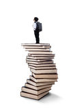 Little boy standing on books stack Royalty Free Stock Photos