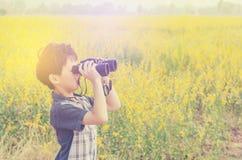 Little boy standing in flower field Royalty Free Stock Photos