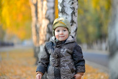 Little boy standing near the tree in autumn Royalty Free Stock Photos