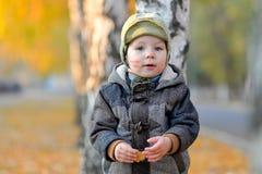 Little boy standing near the tree in autumn Stock Photo