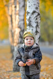 Little boy standing near the tree in autumn Stock Photography