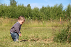Little boy stands at green meadow and looks down Royalty Free Stock Photo