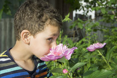 Little boy stands near a pion. Stock Photos