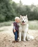 Little boy stands near malamute dog on walk in forest. Little boy stands near sitting malamute dog on walk along forest road Royalty Free Stock Photography