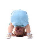 Little boy stands upside-down. A little boy on all fours isolated on the white Stock Image