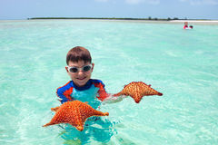 Little boy with a starfish Royalty Free Stock Image