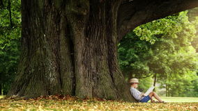 Little boy in a straw hat sits under the tree and reads a book magical time stock footage