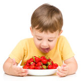 Little boy with strawberries Stock Image