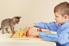 Little boy with striped kitten plays chess. Little boy with a striped kitten plays chess Royalty Free Stock Photos