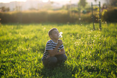 Little boy in a striped T-shirt blowing a dandelion.Spring, sunny weather. Royalty Free Stock Photo