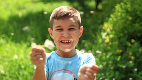 Little boy in a striped T-shirt blowing a dandelion.Spring, sunny weather. Video stock video footage