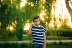 A little boy in a striped T-shirt is playing on the playground, Swing on a swing. Child is smiling and cheering Stock Photos