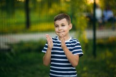 A little boy in a striped T-shirt standing in front of green background. Smiling and looking to the photographer. Boy. A little boy in a striped T-shirt standing royalty free stock photo