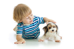 Little boy strokes a dog, isolated on white background stock image