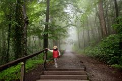 Little boy during stroll in foggy misterious park Stock Photo
