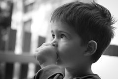 Little boy sucking his thumb. Black and white side-view portrait of a cute little boy sucking his thumb royalty free stock image