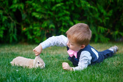 Little boy in a suit playing in the park with a rabbit Royalty Free Stock Photo