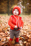 Little boy in a suit with a pumpkin gnome in autumn park Royalty Free Stock Photo