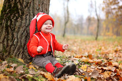 Little boy in a suit with a pumpkin gnome in autumn park Stock Images