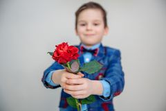 Little boy in suit standing with red rose, isolated on a light background stock image