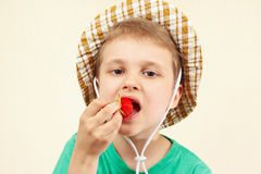 Little boy in the summer hat eating strawberry Stock Images
